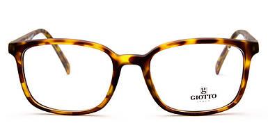 Оправа мужская Giotto Gi VS66/D
