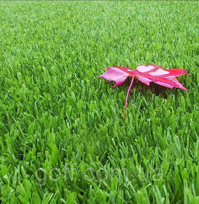 искусственная трава. Как выбрать