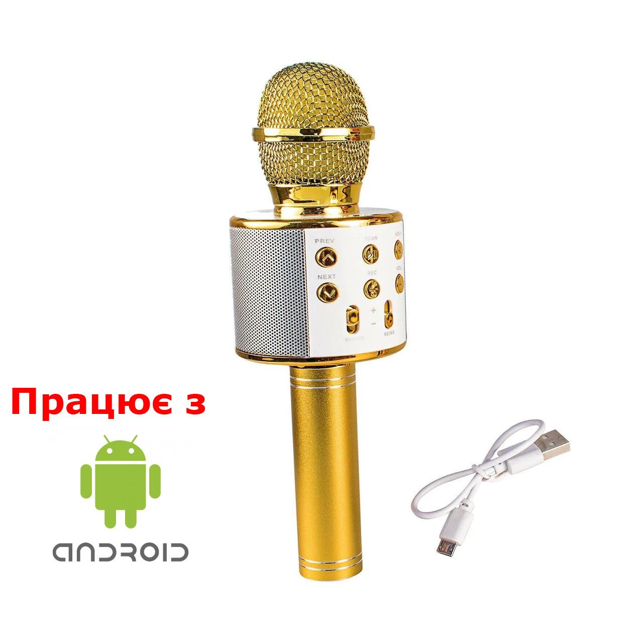 Детский микрофон с usb (караоке) золотой (WS-858-2)