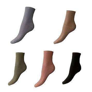 Женские демисезонные носки разноцветные хлопок