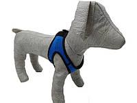 Шлейка жилет для собак Фітнес 3, фото 1