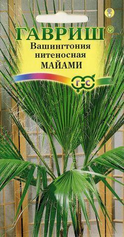 Семена Вашингтония нитеносная Майами
