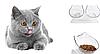 Миска для кота,собаки, тарелка для кота и собаки, набор из 2 шт., фото 6
