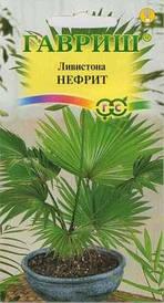 Семена пальма Ливистона китайская Нефрит