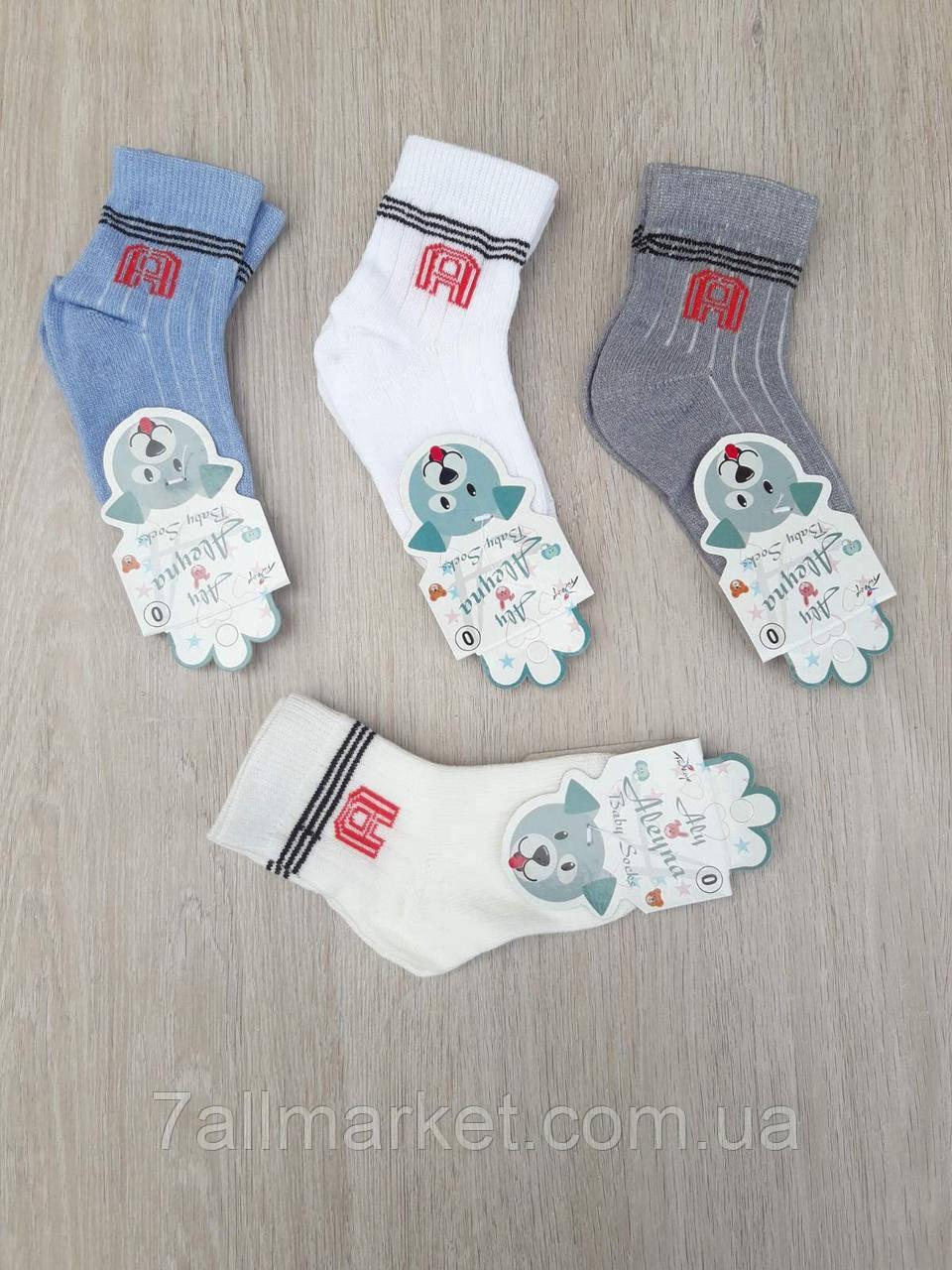 """Шкарпетки дитячі на хлопчика розмір 0 (12шт/уп) (4 цв)""""MARI"""" купити недорого від прямого постачальника"""