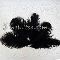 Перо страуса, 10-15 см, черный