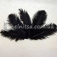 Перо страуса, 16-18 см, черный