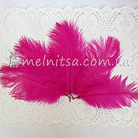 Перо страуса, 10-15 см, ярко-розовые