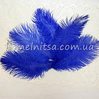Перо страуса, 16-18 см, синие