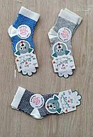 """Шкарпетки дитячі на хлопчика розмір 3 (12шт/уп) (3 цв)""""MARI"""" купити недорого від прямого постачальника"""