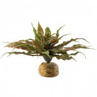 Hagen Exo Terra Desert Plant Star Cactus искусственное растение кактус