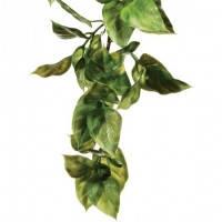 Hagen Exo Terra Jungle Plant Amapallo Medium искусственное растение среднее