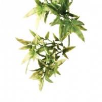 Hagen Exo Terra Jungle Plant Croton Medium искусственное растение кротон средний