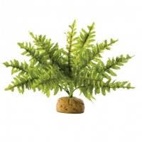 Hagen Exo Terra Rainforest Plant Boston Fern Small искусственное растение папоротник малый