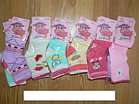 Носочки на девочек Gino , 22-30 рр