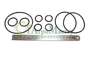 Ремкомплект гидроцилиндра ходового вариатора (Е280/281, Е301/303)