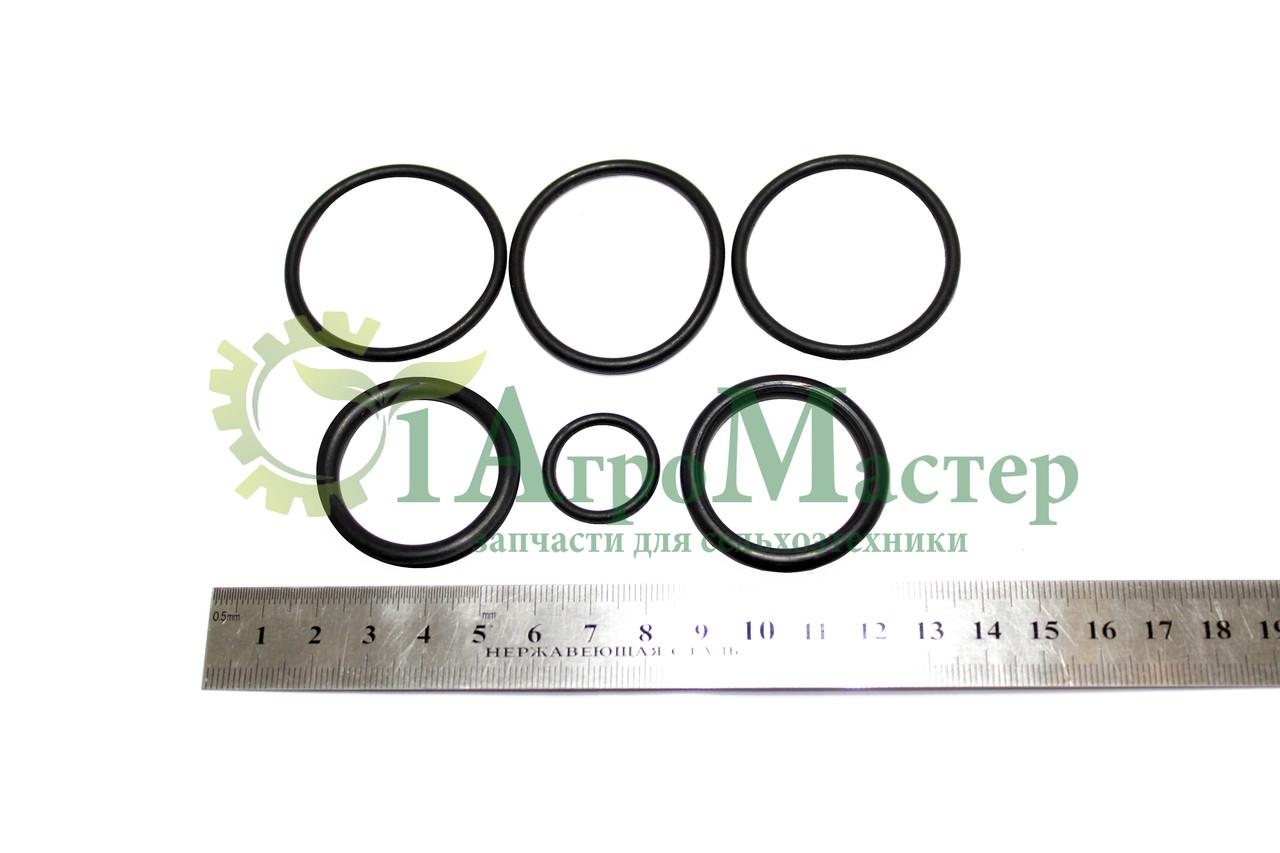 Ремкомплект гидроцилиндра фиксатора тяговой рамы (122.08.02.000)