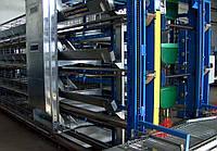 Клітинне устаткування для вирощування промислового стада курей-несучок, фото 1