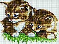 Алмазная мозаика Маленькие котята SKL40-229132