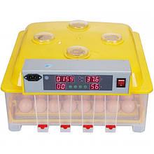 Автоматический инкубатор на 48 куриных яиц MS 48 AGRO
