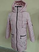 Куртка для девочки Vo.brend оптом, 116-146 рр.