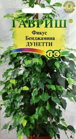 Семена Фикус Бенджамина Дунетти