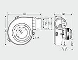Вытяжной вентилятор MplusM WW 150-05  (145 куб. м/час), фото 3