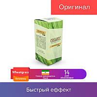450 гр. Wheatgrass - витамины для волос от Organic Collection (Витграсс)
