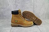 Женские ботинки кожаные зимние рыжие Brand 205, фото 3