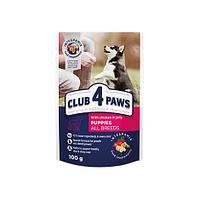 Клуб 4 Лапы паучи влажного корма для щенков