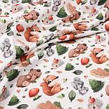 """Лоскут ткани с цифровой печатью """"Белки и медведи, ёлки и грибы"""" на белом № 2278, размер 17*160 см, фото 2"""