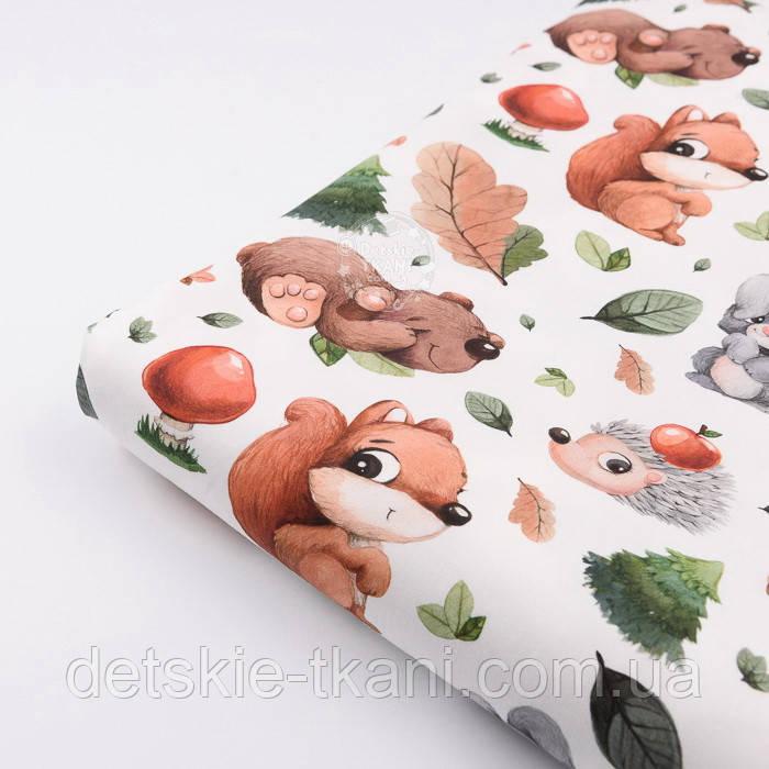 """Лоскут ткани с цифровой печатью """"Белки и медведи, ёлки и грибы"""" на белом № 2278, размер 17*160 см"""