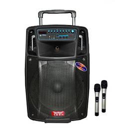 Аккумуляторная колонка с микрофонами SL 1501 (Bluetooth,USB, SDMMC, Аккумулятор, 220V+2микрофона)