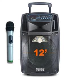 Аккумуляторная колонка с усилителем Feiyang SL 12-01 с микрофоном