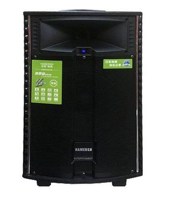 Аккумуляторная колонка с микрофонами QX-1521 500W (USB/Bluetooth/Пульт ДУ), фото 2