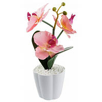 Декоративный светильник WL искусственный цветок Орхидея с подсветкой в горшочке 11,5х28 см на батарейках (W/5551)