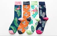 Яркие хлопковые носки с фламинго