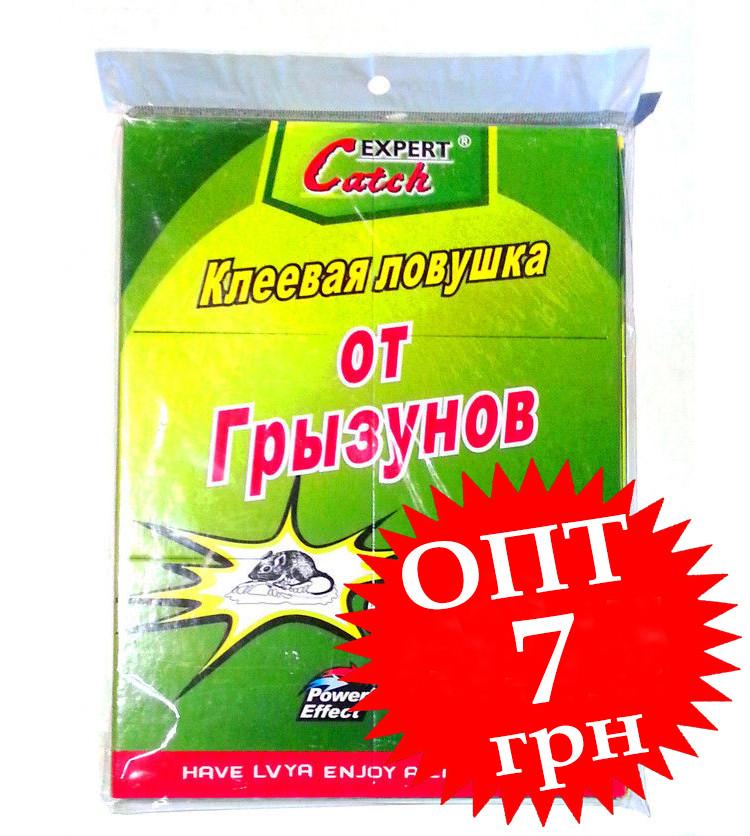 Catch Expert клеевая ловушка от грызунов Малая Книжка 17х26 см.