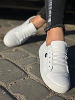 Женские стильные кожаные кеды Lacoste  model- L4, белые