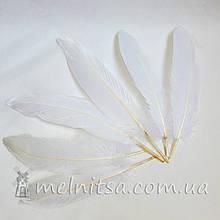 Перо гусиное 10-12 см, белый