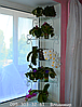 """Подставка для цветов на 5 полок, стеллаж оконный """"Яна-1"""""""