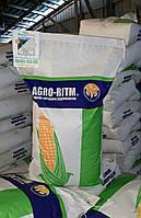 Семена кукурузыМарсель. Фракция Стандарт ФАО 300