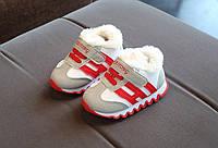 Серый+красный+белый теплые кроссовки унисекс Стелька: 12,5см(р) зима 00109