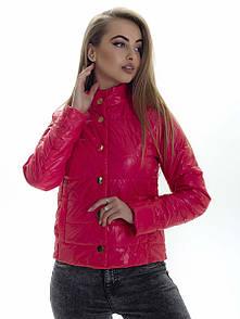 Куртка женская весна SK158