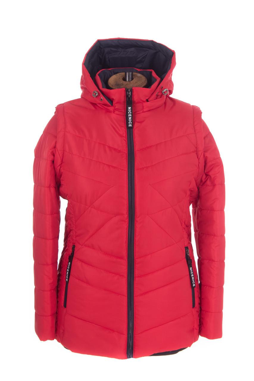 Женская весенняя куртка  большого размера  48-58 красный