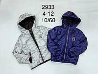 Куртки демисезонные на мальчика оптом, F&D, 4-12 рр
