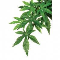 Hagen Exo Terra Silk Plant Abutilon Medium искусственное шелковое растение абутилон средний