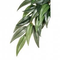 Hagen Exo Terra Silk Plant Ruscus Large искусственное шелковое растение рускус большой