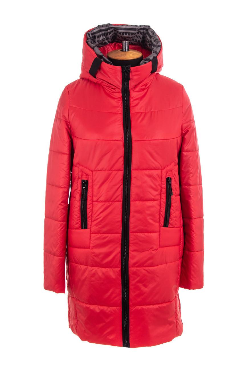 Женская весенняя куртка  больших размеров   46-56 красный