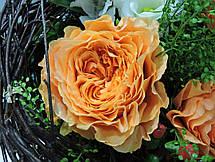 Роза Каралуна (Caraluna) ч/г, фото 3